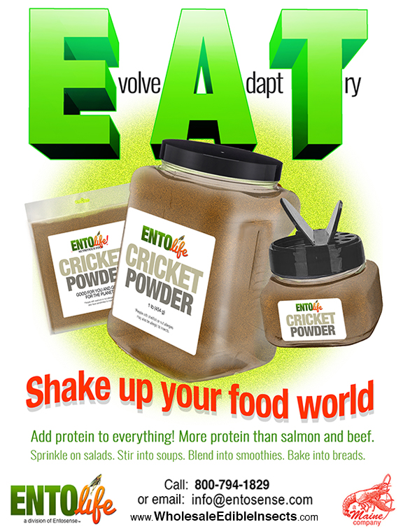 Gourmet Edible Insects