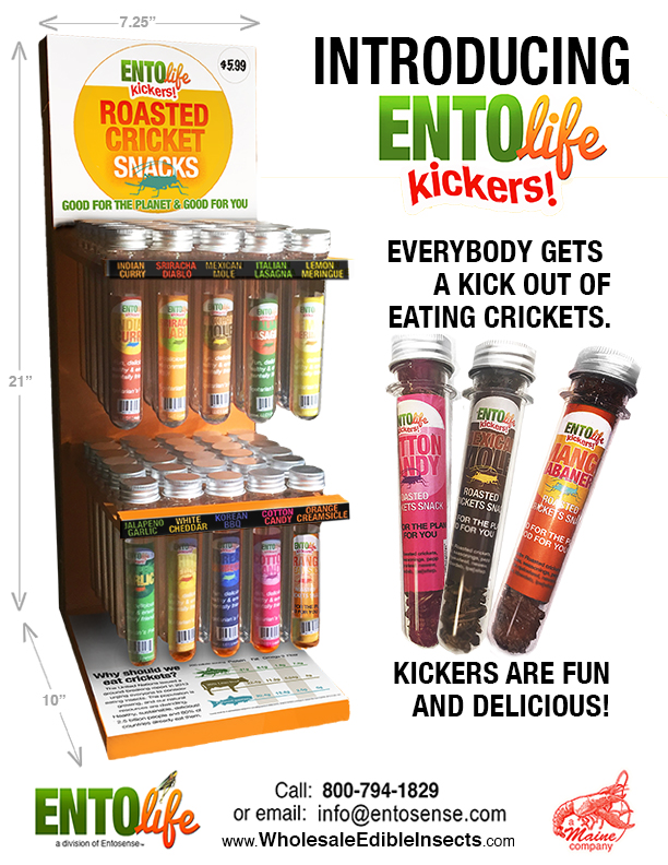 Mini-Kickers-Flavored-Crickets