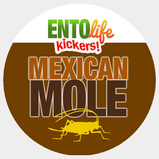 Mini-Kickers | Mexican Mole Flavored Crickets