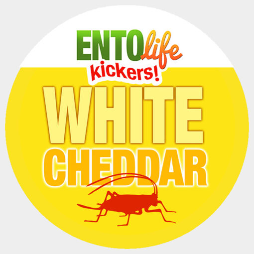 Mini-Kickers | White Cheddar Flavored Crickets
