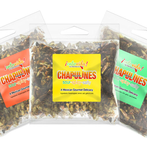 Toasted Chapulines Samples