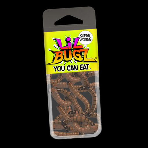 Lil Bugz Superworms